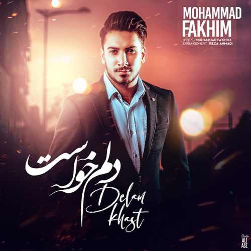 دانلود موزیک جدید محمد فخیم دلم خواست